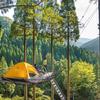【ツリーピクニックアドベンチャーいけだ】樹上で過ごす様々なアクティビティをお楽しみください!!