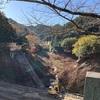 11月14日土曜日 奥武蔵グリーンライン峠走