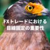 FXトレードにおける目線固定の重要性