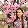 <新宿御苑>桜が告げる春の訪れと、【茶室・楽羽亭】の点出し呈茶(立礼席)