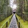 わびさびの京都散歩