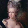 マリーアントワネットとフェルセン伯爵のラブレターの黒塗りを暴く?