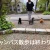 2021.4.29 【キャンパス散歩】 Uno1ワンチャンネル宇野樹より