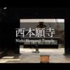 『西本願寺』の阿弥陀堂へ足を運ぶと気持ちが癒される【ショートムービー】