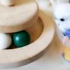 【ここすけの日常】インコが飼いたくなる動画集①【budgerigar】