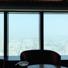 台湾24日目 85スカイタワーからの眺めが最高すぎた @高雄