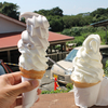 【横須賀編】横須賀で大人気のソフトクリーム屋さん♪