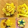 夏らしい、黄色いバラはいかが? 〜夏にぴったりな佐藤ローズ〜