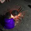 中国・貴州省の山奥の村で、侗族のおじいさんの家に泊めてもらった 中国大陸版【田舎に泊まろう】④ 侗族メシ。