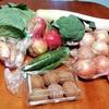 野菜だいすき。八百屋で大量に野菜を買う。