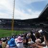 【夏の甲子園2019】49代表校予想、出場校一覧、地方大会日程【高校野球】