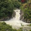 屋久島(滝の巻)