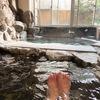 日本三大美肌の湯 嬉野温泉 嬉泉館 日帰り入浴記 貴重な自家源泉を持ち100%かけ流しにこだわる宿