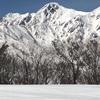 2020年4月7日、五竜スキー場は放射冷却で硬めのバーン、カービングボーダーが集合