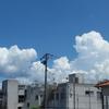 残暑お見舞い申し上げます。9月、稲穂が垂れる時季を思う。