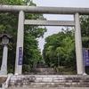 旭川市上川神社にてエゾリス観察、きちんとお参りして来ました。