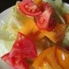 夏野菜が美味しい時期