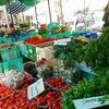 マルタのおいしい「食」からまなぶ豊かな「暮らし」トークイベント