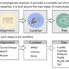ノンスペシャリストのための系統解析webサービス NGPhylogeny.fr
