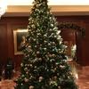 クリスマスツリー in リッツ・カールトン大阪