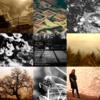 アメブロ、Instagram、Facebookに 作家「花あさぎ」さんの詩をご紹介いたします。