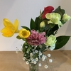 花の定期便でどのような花が届くのか見てみたい。LIFULL FLOWER(ライフルフラワー)の場合