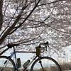 グランフォンド京都の予行演習としてアワイチ走ってきた