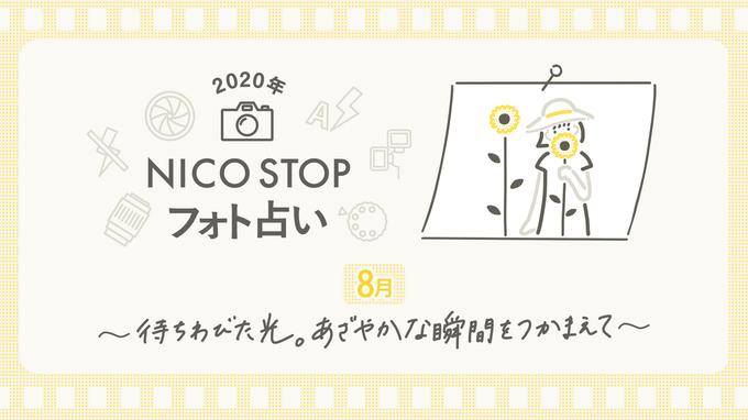 8月のNICO STOPフォト占い|待ちわびた光。あざやかな瞬間をつかまえて