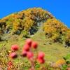 2016年9月30日~10月1日に、紅葉見頃の涸沢(上高地)に行ってきた時の写真です。(見