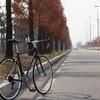 ロードバイクは消費カロリー高くて怪我をしにくい