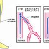 じじぃの「科学・芸術_315_活動的な動物」