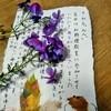❤️❤️幸せの絵葉書き❤️❤️