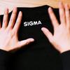【SIGMA】シグマのレンズ構成図Tシャツを購入して着てみた話