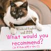 【週末英語#228】レストランでおすすめを尋ねるときは「What would you recommend?」
