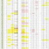 新型コロナウイルス、都道府県別、週間対比・感染被害一覧表 (4月23日現在)