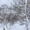 【スノーボード】ナイスバディに魅せられて