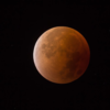 皆既月食を見て、宇宙に熱中していた少年時代を思い出した