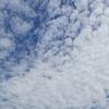 大空をかけて大魚の鰯雲