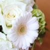 母の日のプレゼントにおすすめの、お花とお菓子のおしゃれギフトセット15を選んだよ