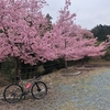 Bike Ride - 2020/02/29, 03/01