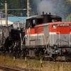 第1046列車 「 回4-2 シキ800形(B梁)の返却回送を沿線で狙う 2019・秋 伯備線紀行その2 」