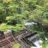 貴船神社 山の力を浴びる旅