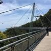 【ランカウイ島】スカイブリッジで絶景鑑賞と空中散歩を体験!