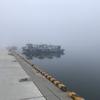 波崎新港にてルアー釣り アジやイナダなどの回遊魚が漁港内に入ってきているというが…