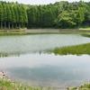 河須ヶ谷堰(千葉県長生)