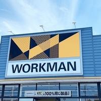 ワークマンで買える「VANS風シューズ」もはやVANS超え!?ワークマン初心者でも取り入れやすいデザインと価格に感動!!