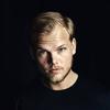 Avicii新作アルバム年内リリースの可能性が報じられたのでEDMの今後について勝手に考えてみた件
