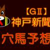 【GⅡ】神戸新聞杯 結果 回顧