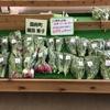 鎌田さんのお洒落野菜
