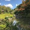 臨済禅の庭・退蔵院:The Garden of Taizo-in Zen Buddhist Temple